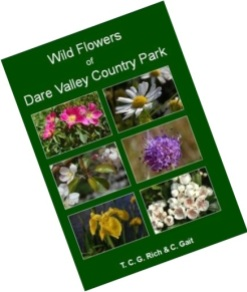 Tim CG Rich and Ceri Gait - Wild Flowers of Dare Valley Country Park